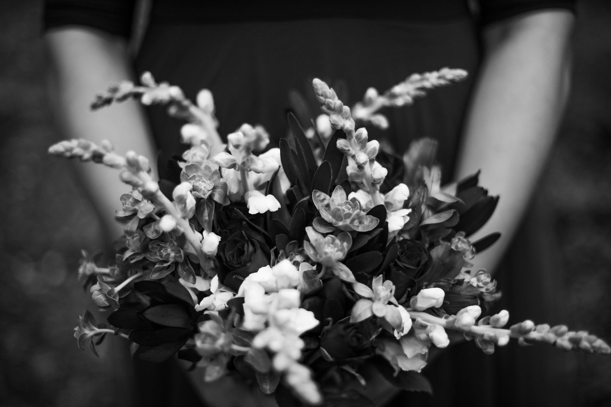 wesley-lanie-george-fernridge-engagement-June-Richards-Photography-Destination-Weddings-Elopements-Garden-Route-33
